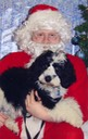 Farley's 1st Christmas002 - Version 2
