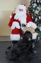 Peggy w. Santa 2013 (smaller)